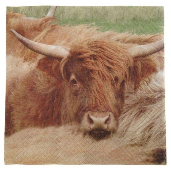 Highland Cow 3 ply Paper Napkins AP2119