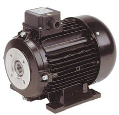 415V Electric Motor - 5.5 Hp - 1450 Rpm 9000210