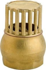 Brass Foot Filter with Valve 402-1055