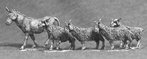 AN01 GOATS AND DONKEY