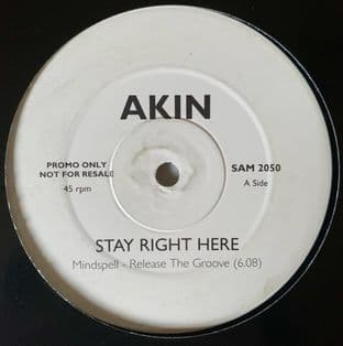 "Akin ‎- Stay Right Here (Mindspell Mixes) (12"") (Promo) (G/NM)"