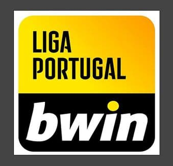 2021-22 Portuguese**LIGA PORTUGAL BWIN**Official Player Issue Size Football Soccer Badge Patch