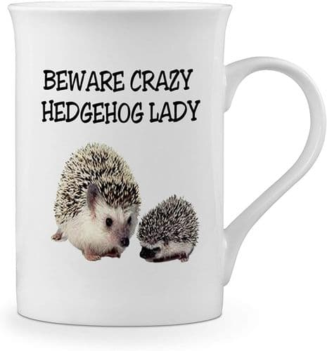 Beware Crazy Hedgehog Lady Funny Novelty Gift Fine Bone China Mug