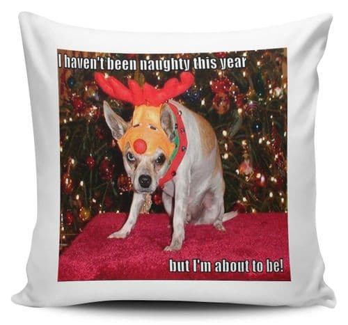 I Haven't Been Naughty This Year But I'm About To Be Funny Xmas Cushion Cover