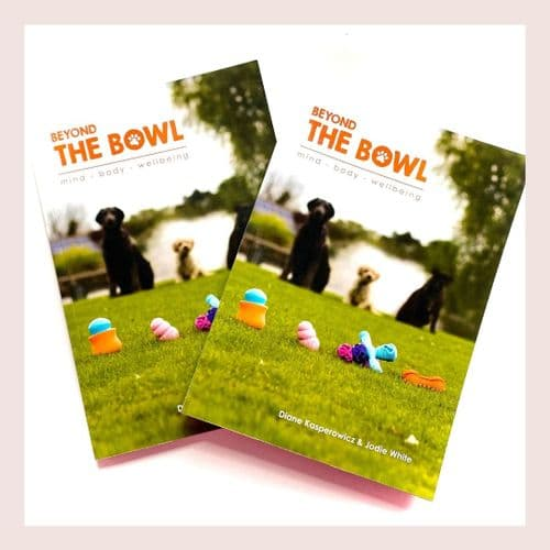 Beyond The Bowl Book
