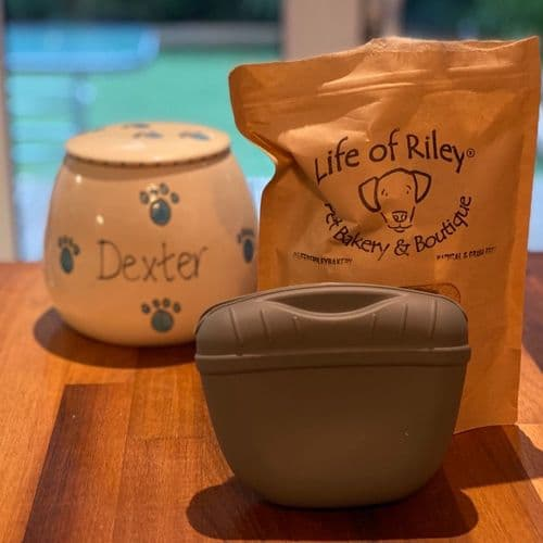 Dog Trainer's Treat Pouch