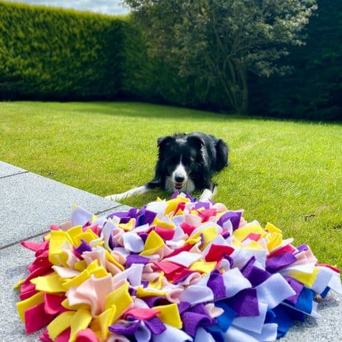 Large Snuffle Mat Dog Enrichment Toy