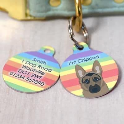 Personalised Dog ID Tag - Rainbow Stripes