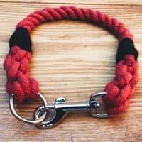 Rope Dog Collar